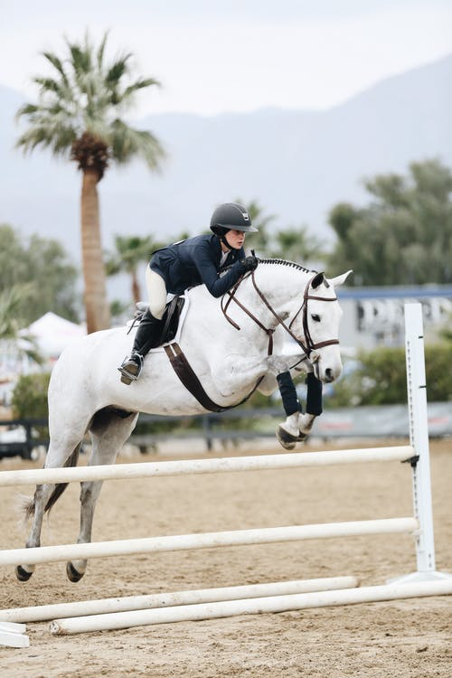 Woman Doing Show Jumping