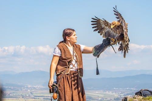 Fotos de stock gratuitas de adulto, águila, al aire libre