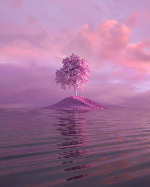Fotos de stock gratuitas de 3d, agua, amanecer