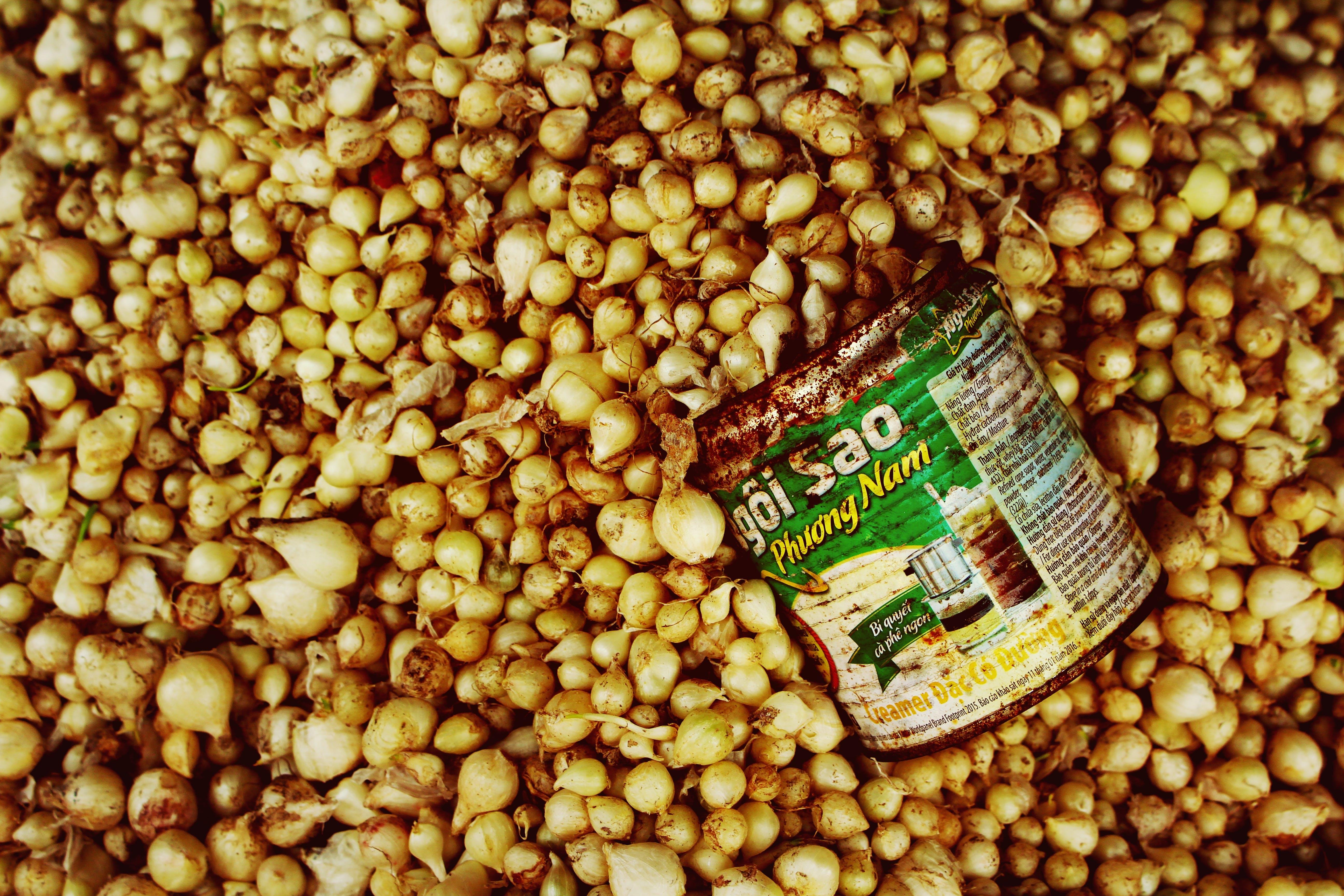 베트남, 시장, 야채, 원두의 무료 스톡 사진
