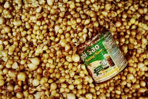 Gratis lagerfoto af bønner, dåse, grøntsager, marked