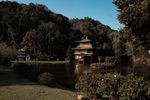 Photos gratuites de Bouddhisme, méditation, méditation de guérison