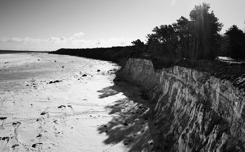 Fotos de stock gratuitas de acantilado, arboles, arena, durante el día