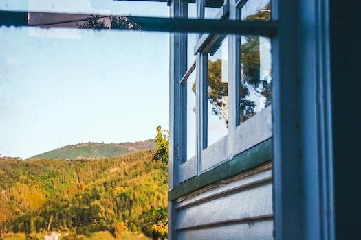 Free stock photo of sky, blue, trees, house