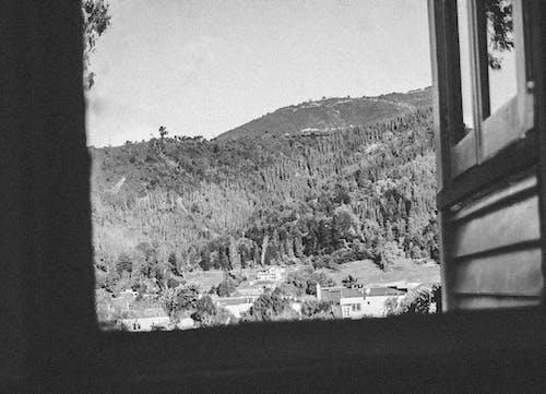 Foto stok gratis bingkai jendela, langit, pohon, refleksi