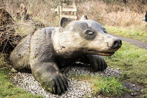 Foto d'estoc gratuïta de estàtua, Gal·les, parc lliscament, reserva natural