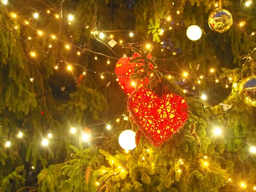 Foto stok gratis #hari natal, #jantung, #pohon natal
