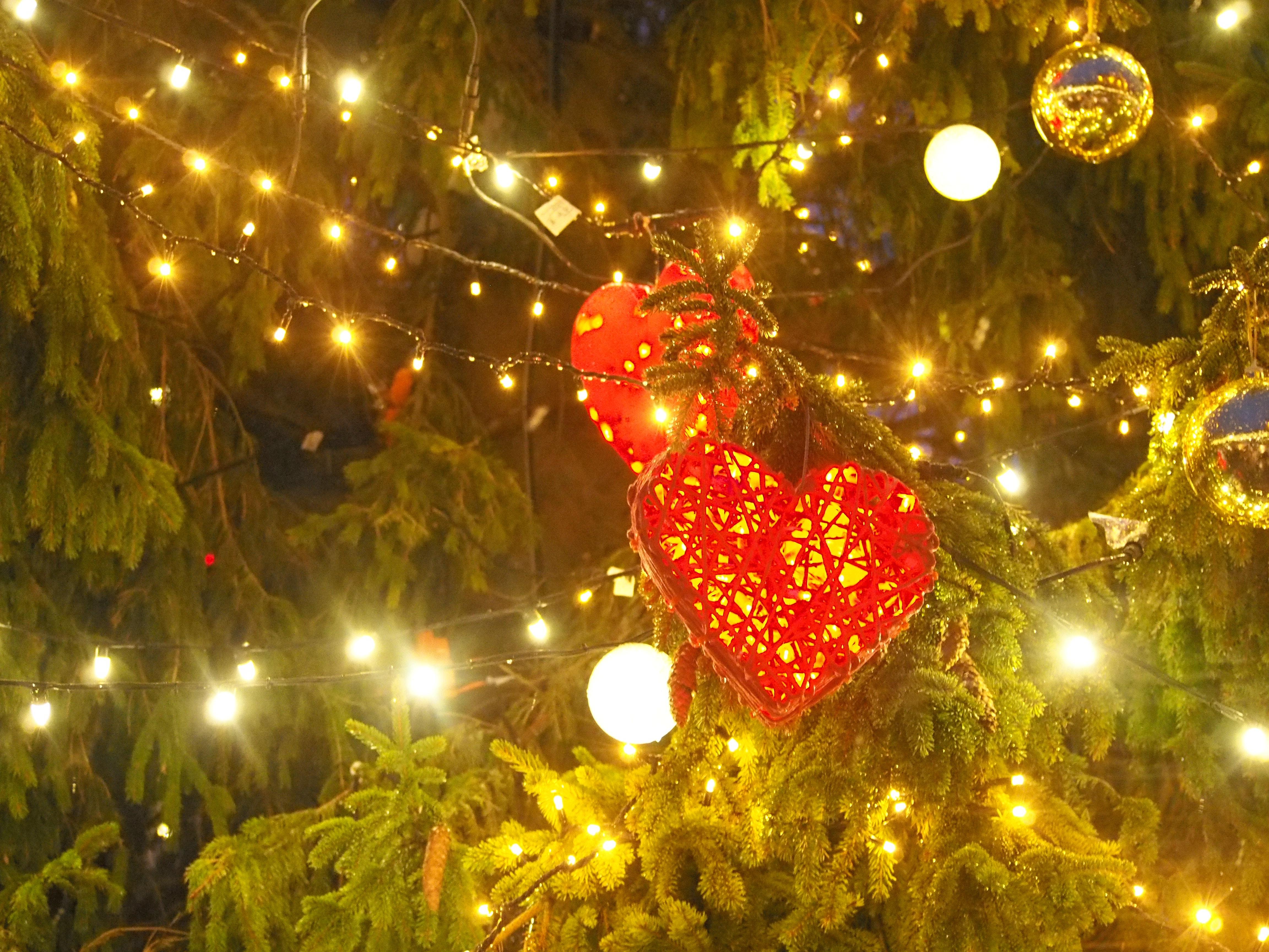 Free Stock Photo Of #christmas, #christmas Tree, #heart