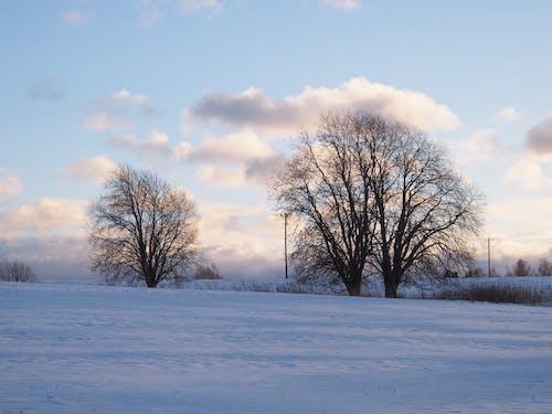 Foto stok gratis #clouds, #golden jam, #halus, #langit