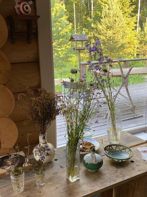 Green Plants on White Ceramic Vase
