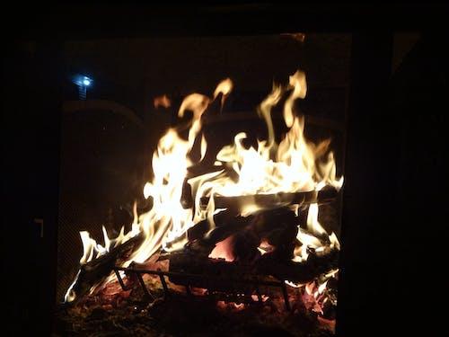 Fotos de stock gratuitas de fuego, hoguera