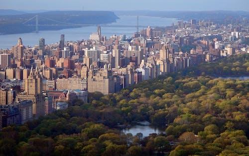 Foto profissional grátis de aéreo, água, arquitetura, arranha-céu