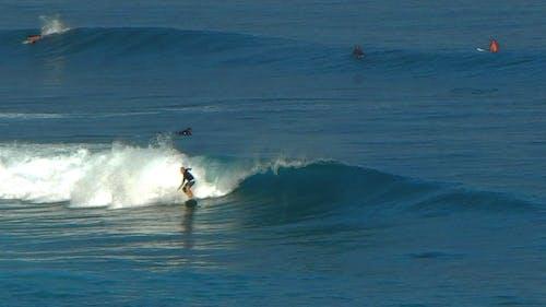 Gratis lagerfoto af surfer