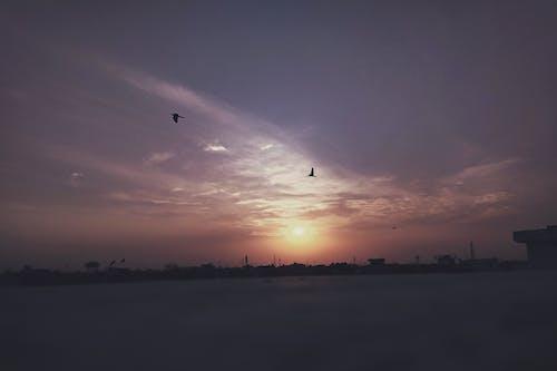 akşam Güneşi, bulut, gökyüzü, gün batımı içeren Ücretsiz stok fotoğraf