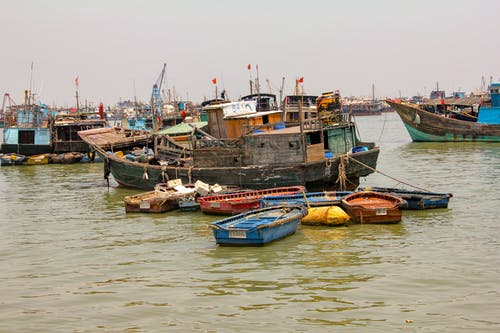 Free stock photo of china, fishermen, fishing, guangdong