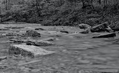 Free stock photo of creek, creek rocks, hillside