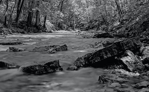 Free stock photo of black and white, creek, hillside