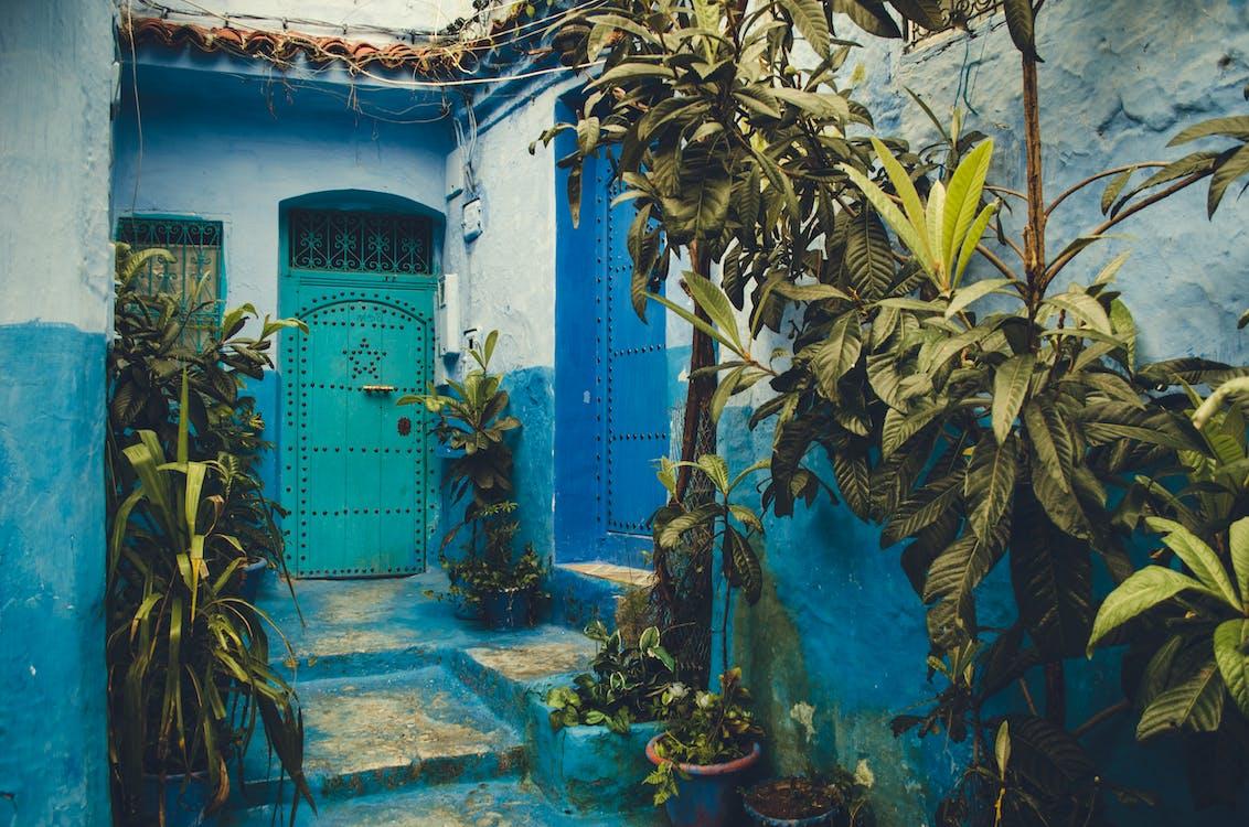 ajtó, bejárat, cserepek