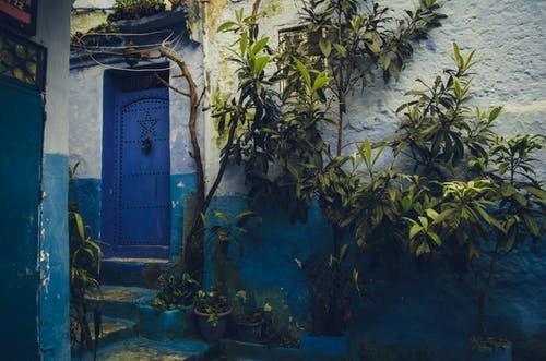 ドア, 壁, 庭園, 日光の無料の写真素材