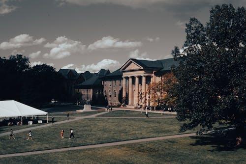 Бесплатное стоковое фото с архитектура, дерево, дневной свет