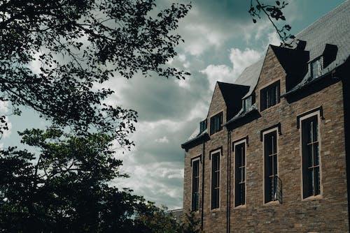 Бесплатное стоковое фото с архитектура, дерево, дом