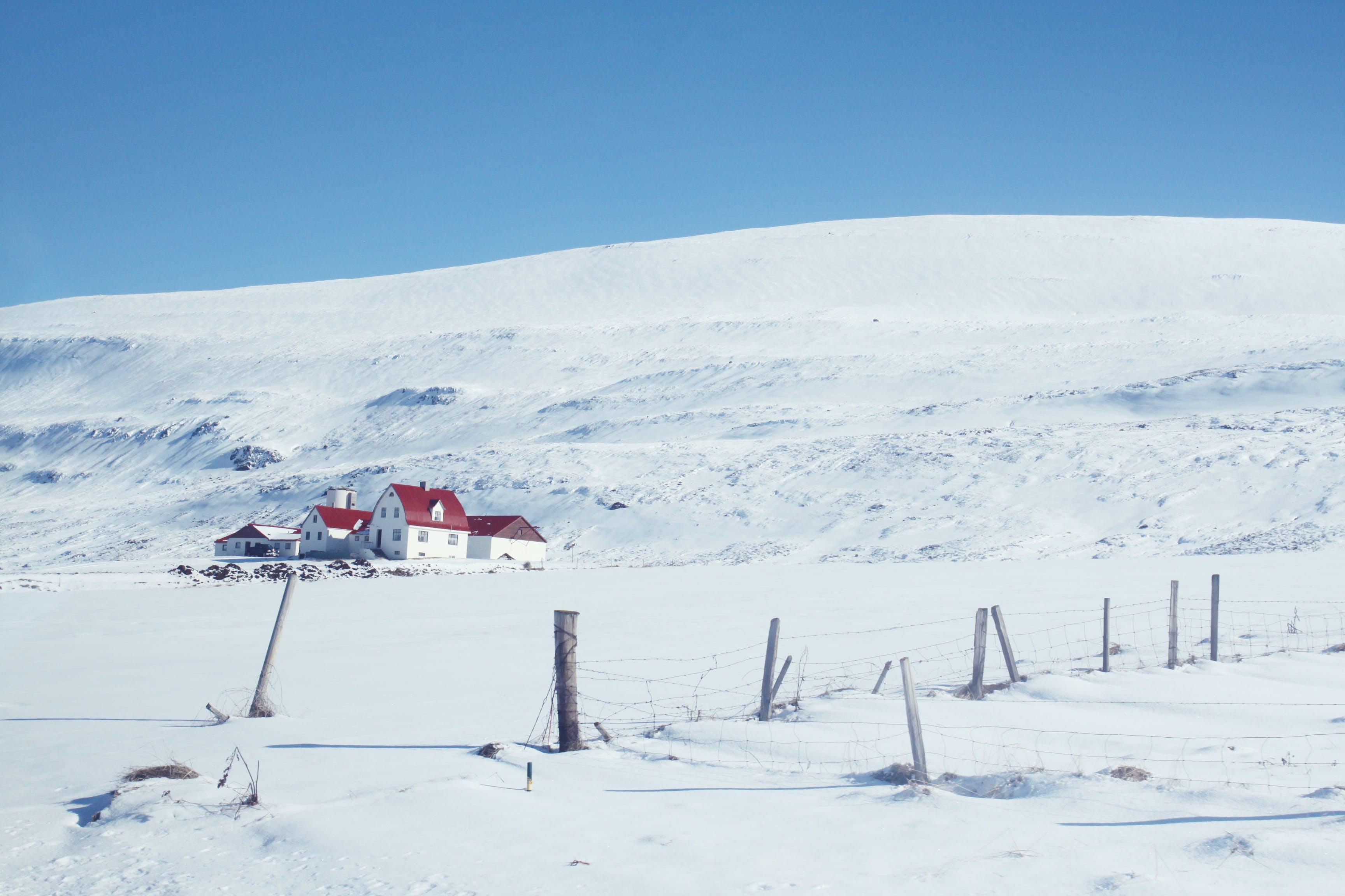 Foto profissional grátis de inverno, Islândia, neve, paisagem