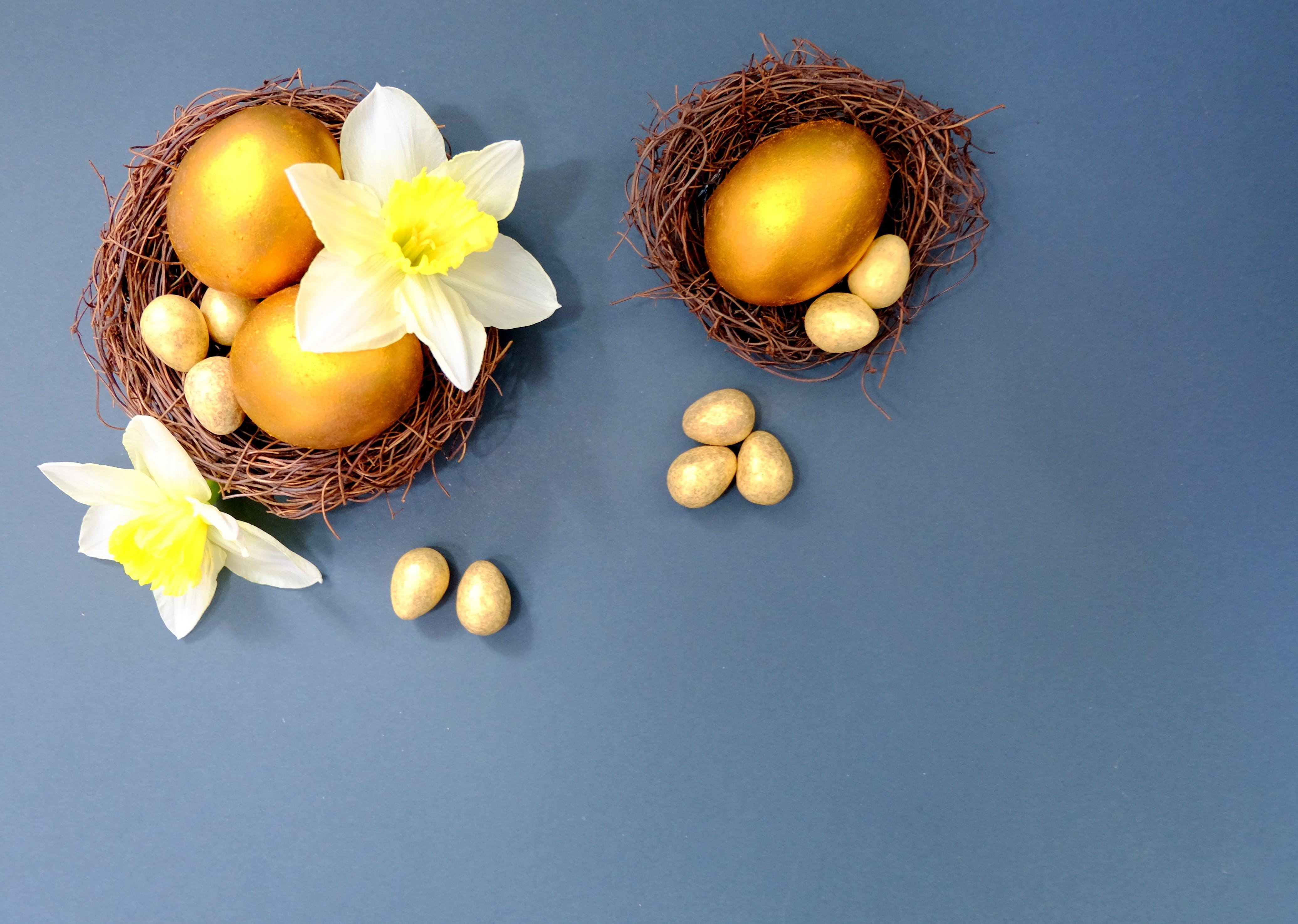 Free stock photo of blue, easter, egg, eggs