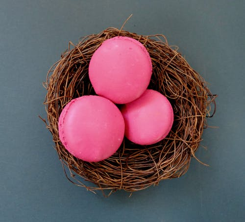 Free stock photo of blue, macaroons, nest, raspberry