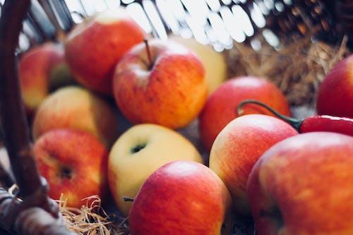 Foto d'estoc gratuïta de bitxo, fruita fresca, pomes, saludable
