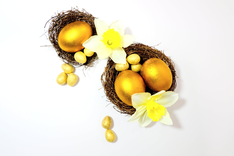 Kostenloses Stock Foto zu blume, ei, eier, gelb