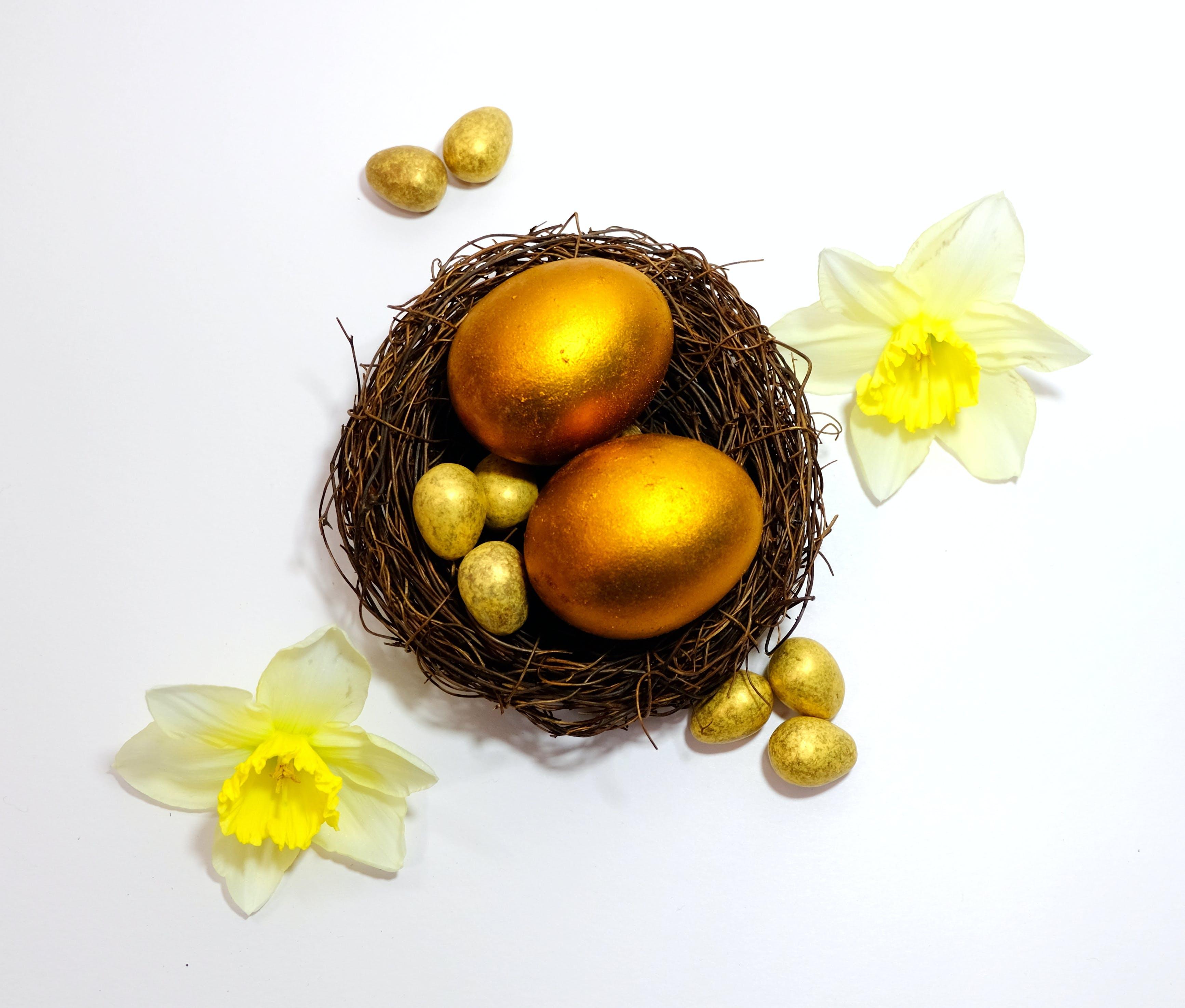Free stock photo of egg, flower, gold, golden