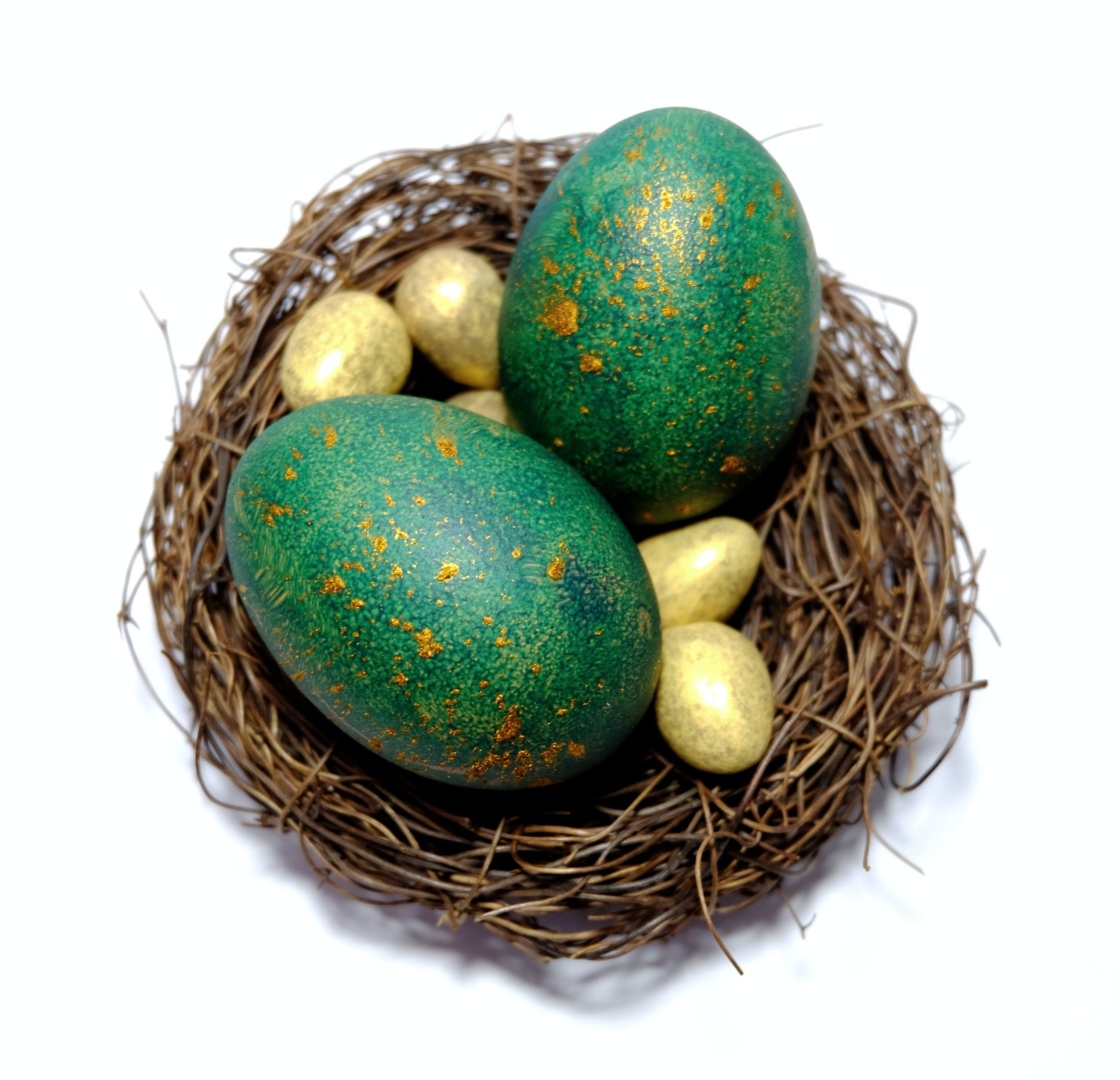 Free stock photo of easter, egg, gold, golden