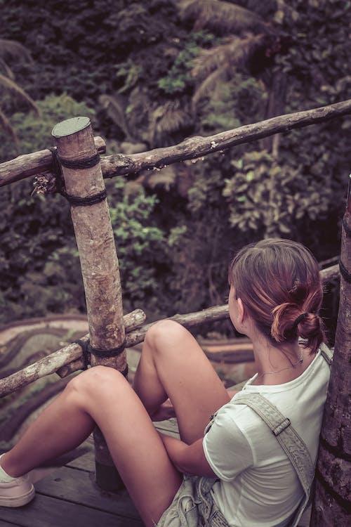 경치, 경치가 좋은, 공원, 나무의 무료 스톡 사진