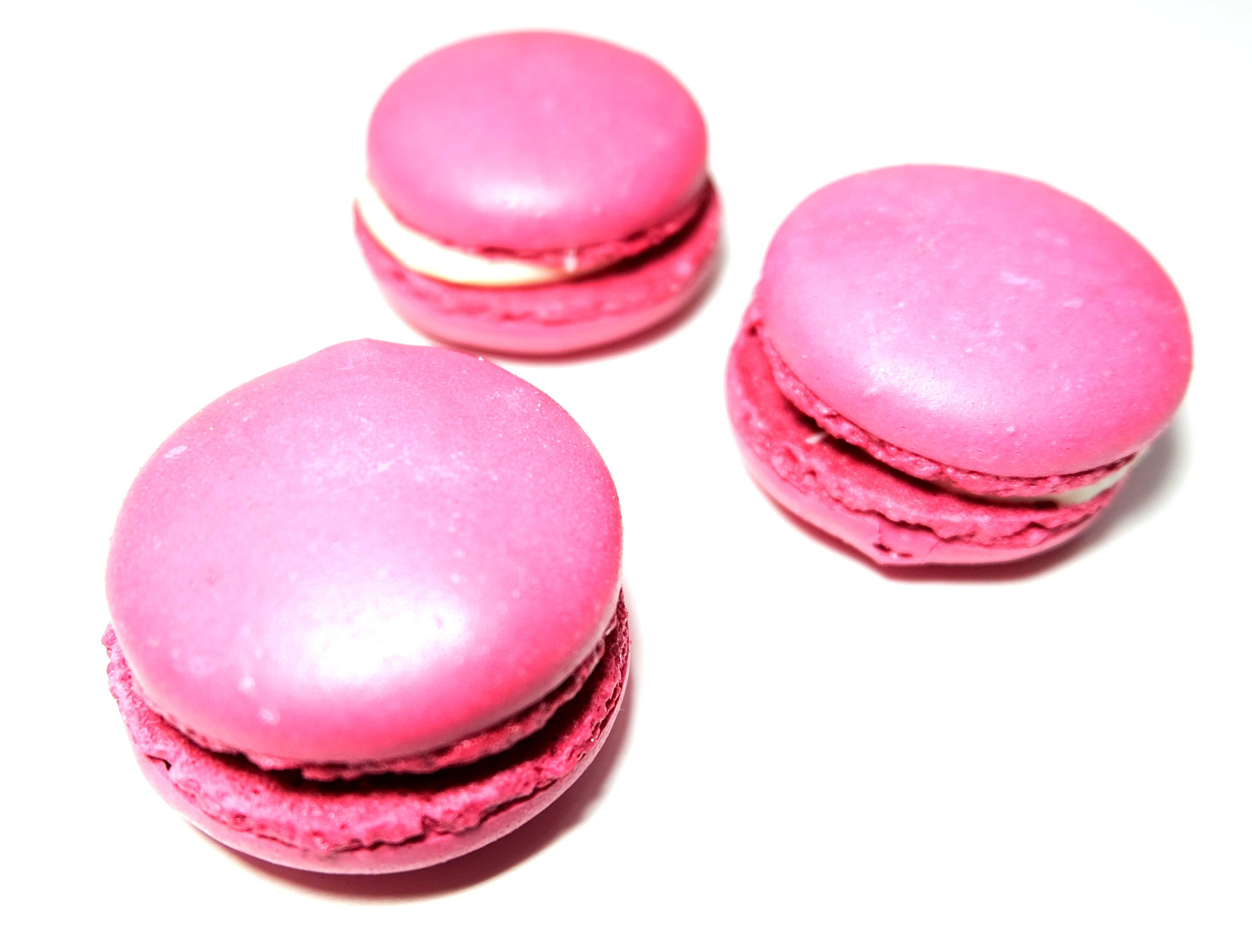 Free stock photo of cute, dessert, feminine, macarons