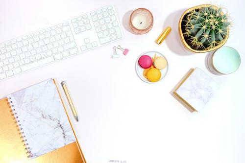 Ilmainen kuvapankkikuva tunnisteilla flatlay, kaktus, kirjoituspöytä, kynttilä