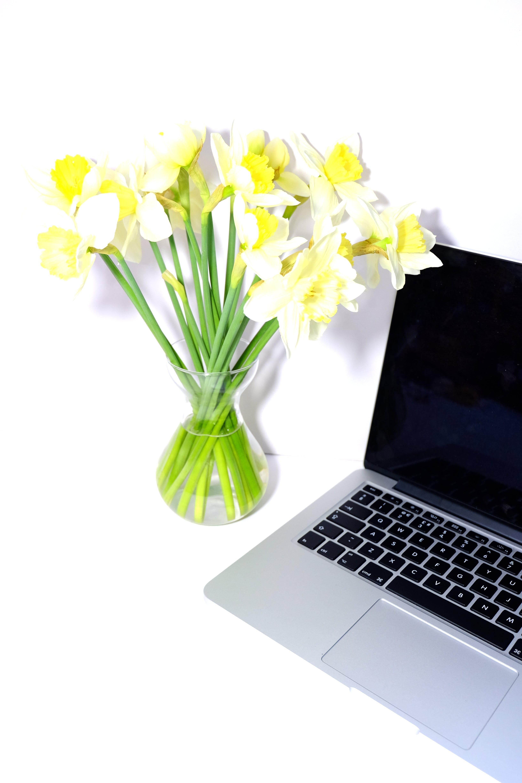 Free stock photo of bright, desk, feminine, flatlay