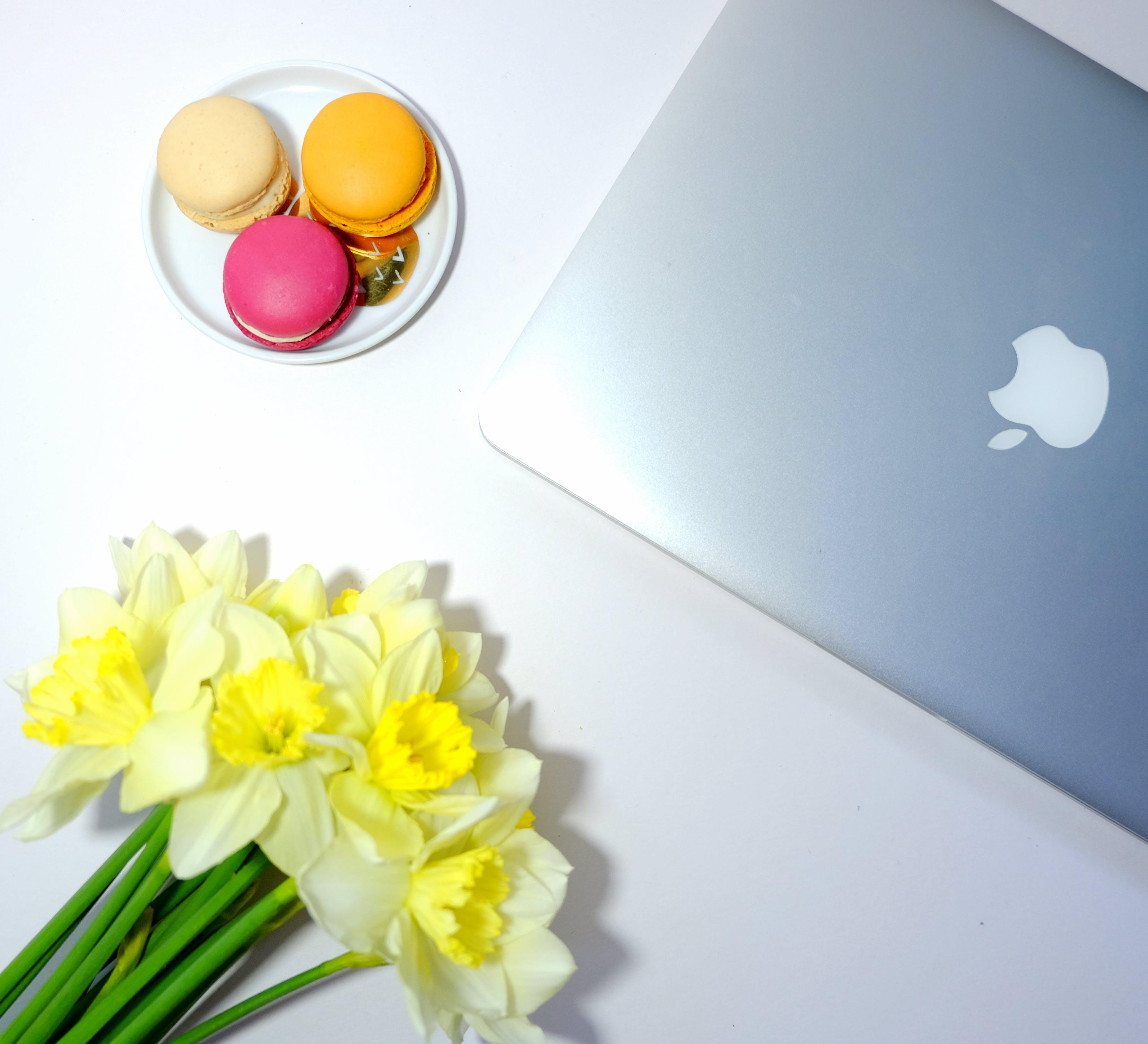 Free stock photo of bright, cute, desk, feminine