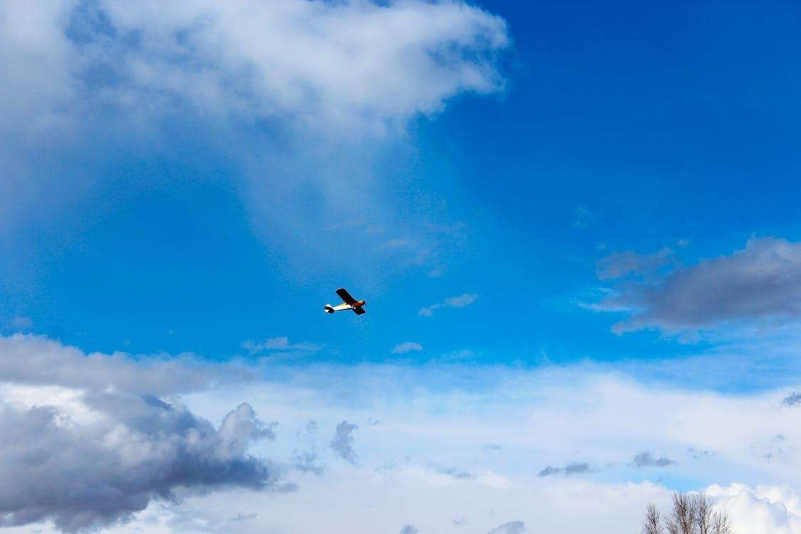 avió, cel blau, super cachorro