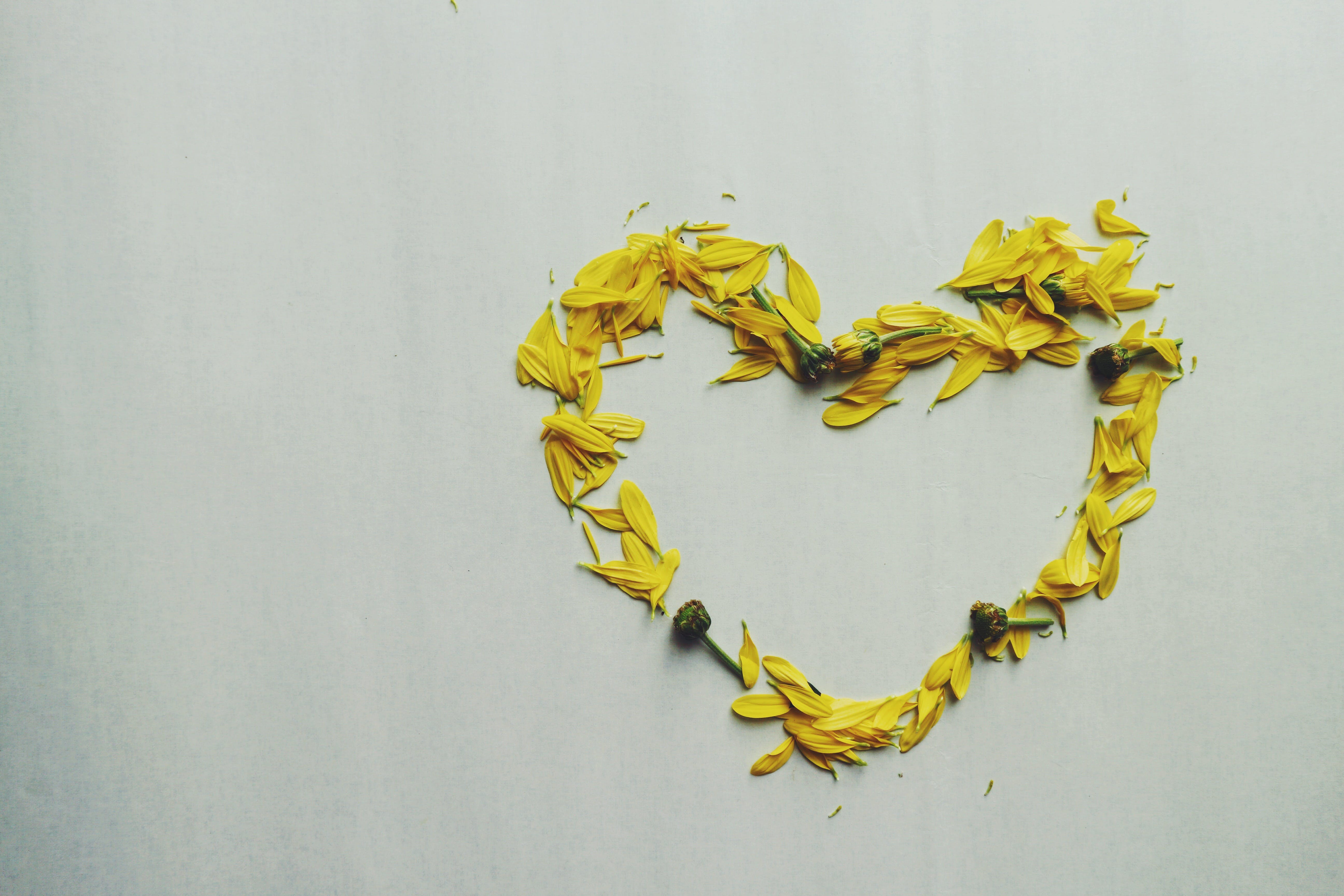 Heart Shape Yellow Flower Petals