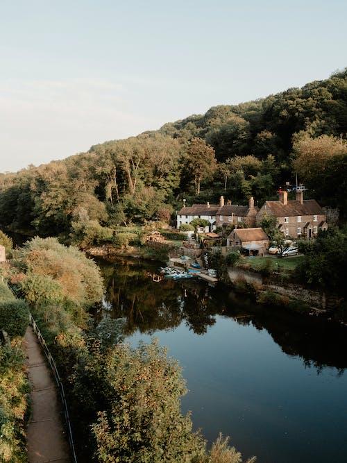 Gratis stockfoto met bomen, Bos, cottage