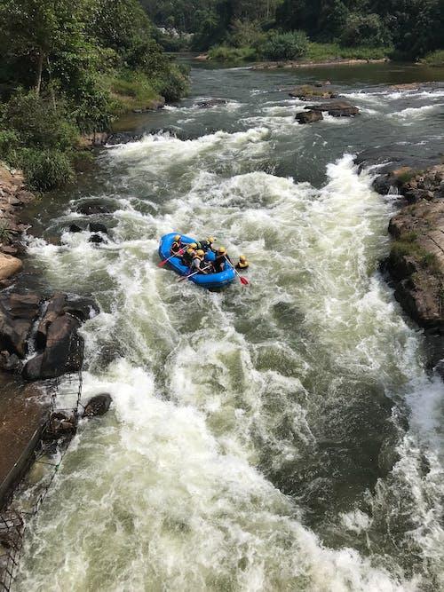 Free stock photo of adventure, fun, rafting