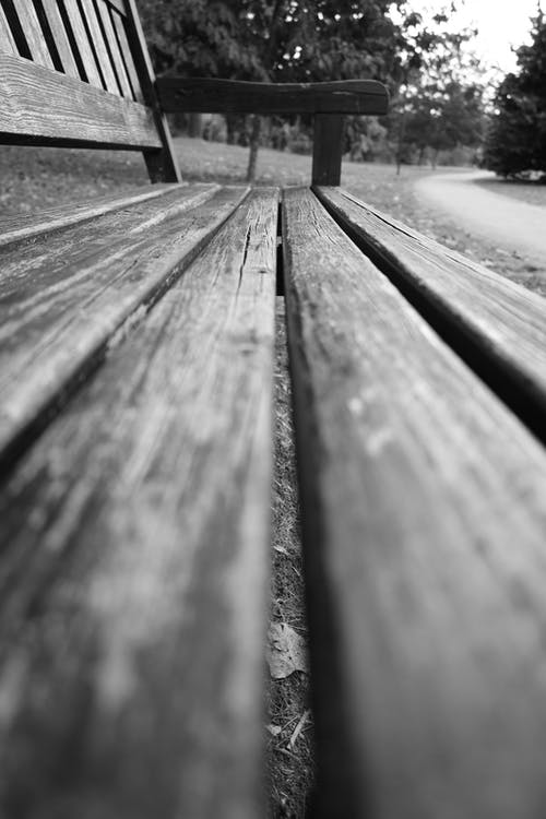 Free stock photo of autumn leaves, bench, black and white