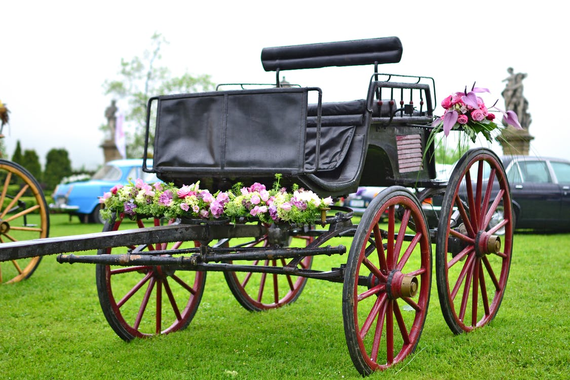 黑色馬車上的粉色和紫色花朵