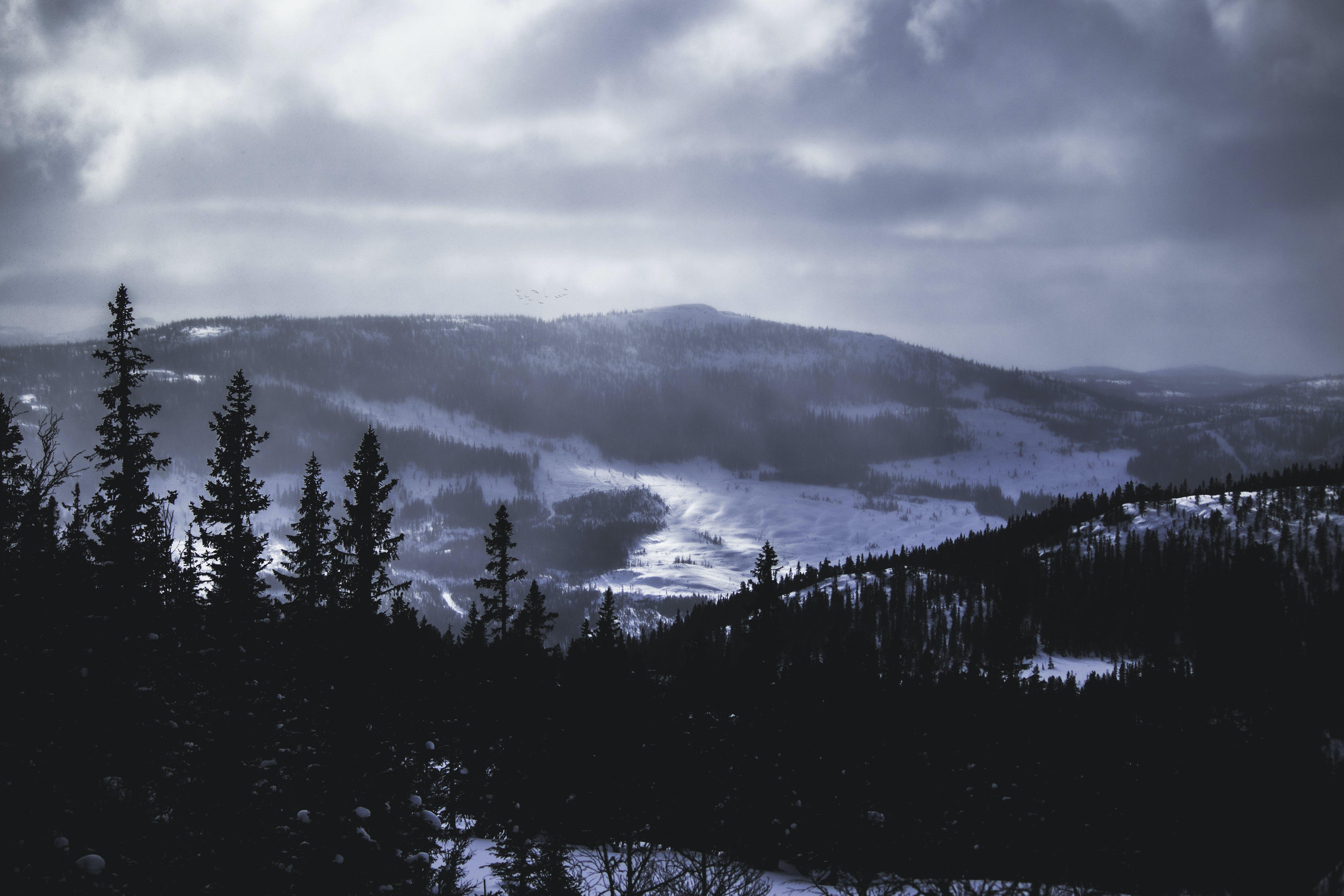 về ánh sáng ban ngày, băng, băng giá, bầu trời
