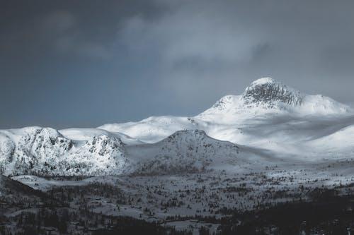 Ilmainen kuvapankkikuva tunnisteilla flunssa, jää, jäätynyt, korkea