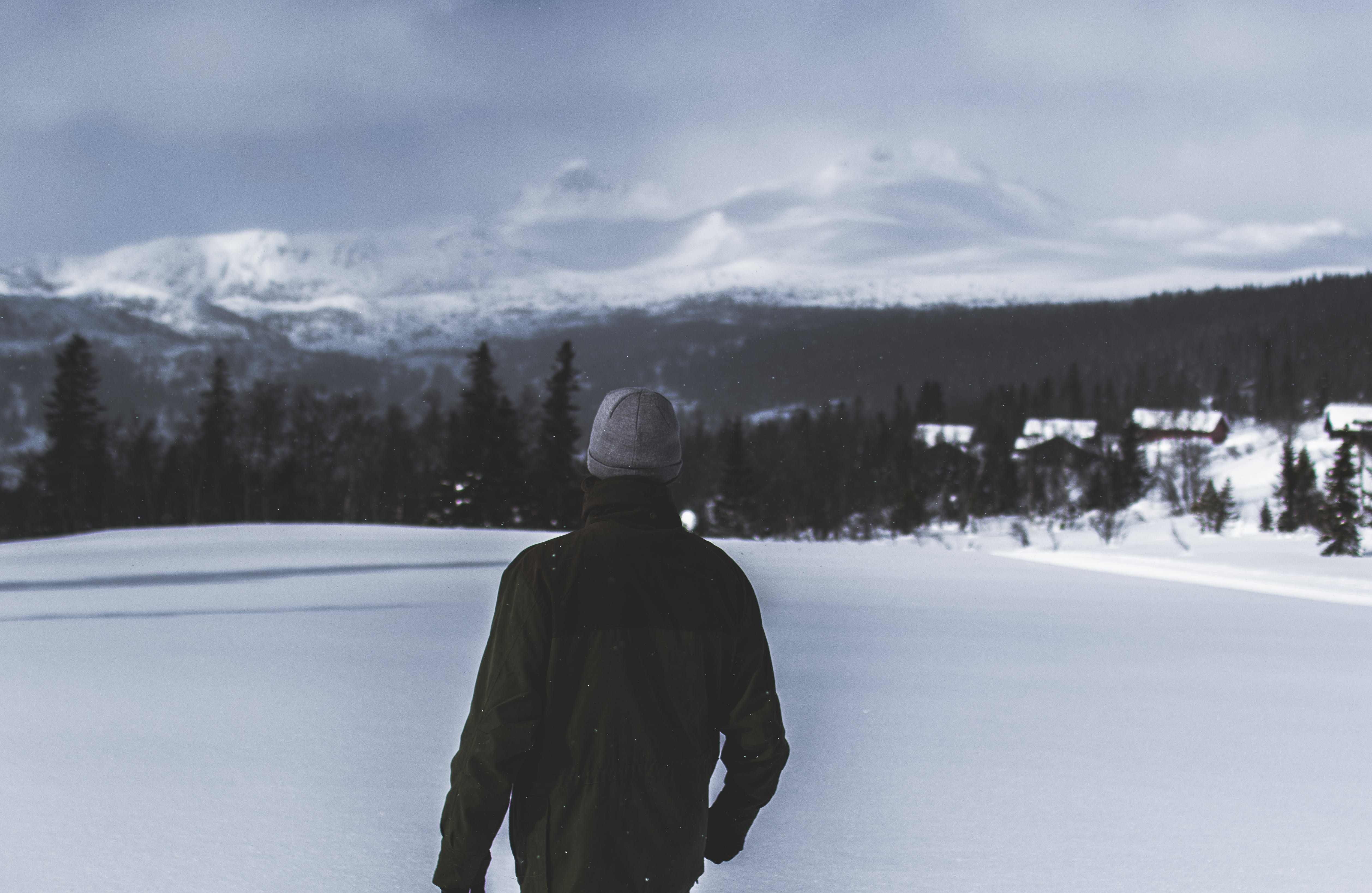 Kostenloses Stock Foto zu abhang, bäume, berge, einfrieren