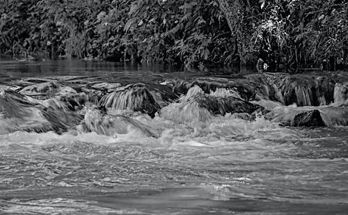 Free stock photo of black and white, creek, river