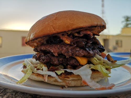 Free stock photo of burger