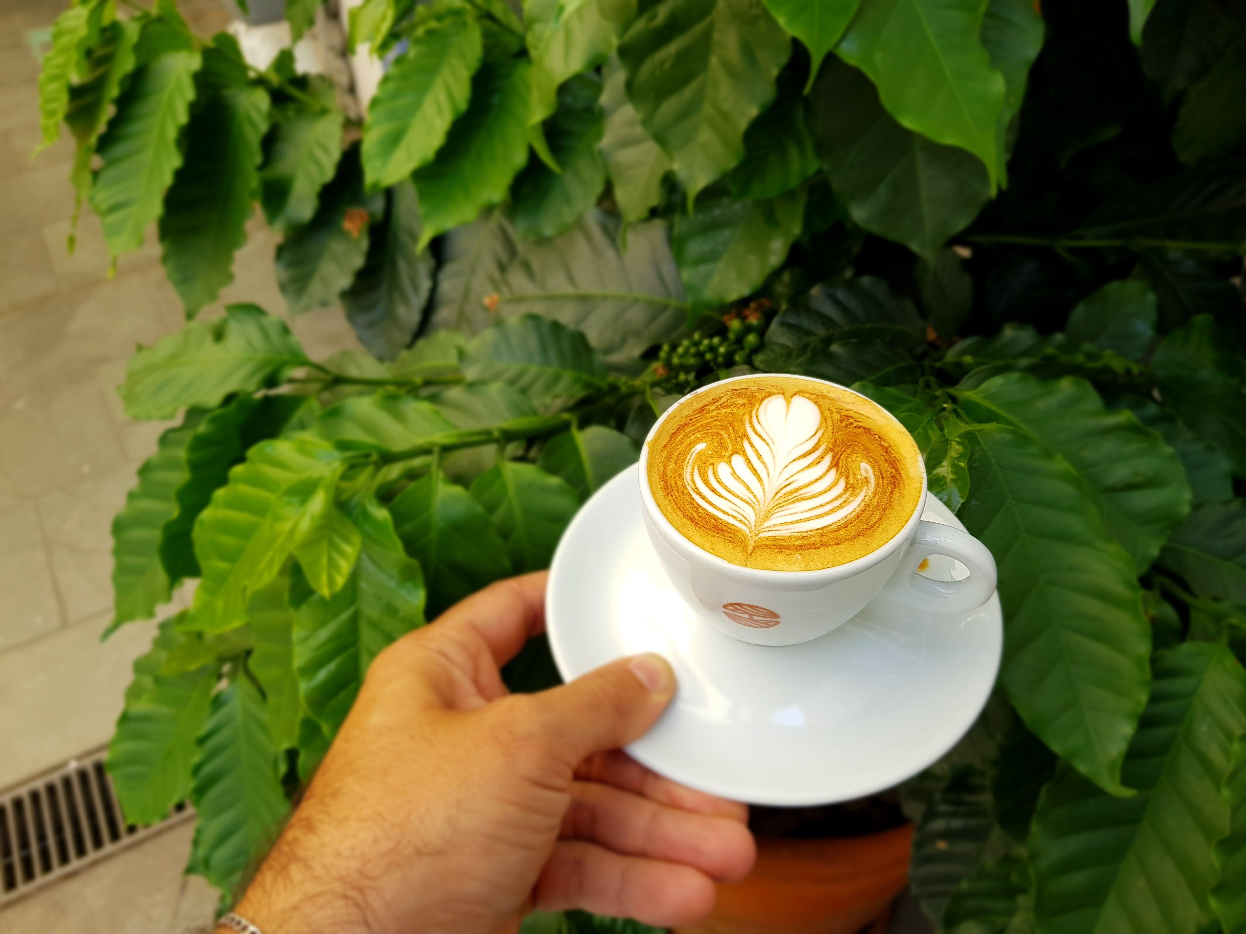 Δωρεάν στοκ φωτογραφιών με latte art, αναψυκτικό, ζεστός, καπουτσίνο