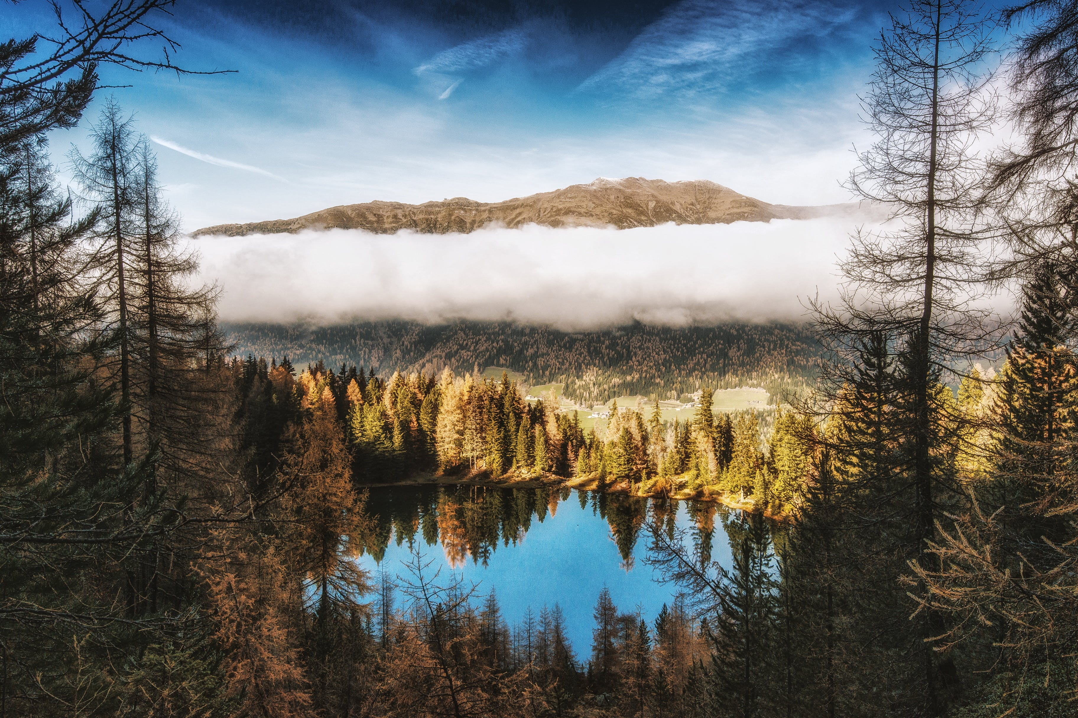 Pine Trees Beside Body of Water Near Mountain Under White Clouds